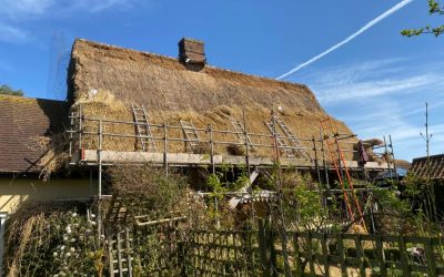 Suffolk Rethatching with Long Straw